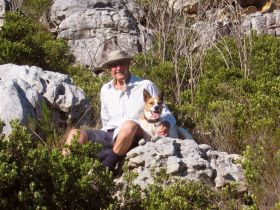 """A masterful shot from old chum Bill Cope.  He does a lot of walking up in Silvermine Nature Reserve, part of a group who do regularl hikes there Tuesdays.  Anyway, I've been angling for some time for Bill to share """"my bit of mountain"""" - we finally got it together; great climb on a cool sunny day - up """"Cullen's Ridge"""" so moving into the mysterious """"Barry's Pass"""" to the summit and obligatory coffee stop with view.  Smiling beside me is hound-dog """"Bond"""", a Canus Afrikanus, which breed I am told are descended from the Pharaohs."""